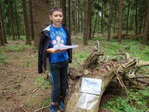 hra v lese